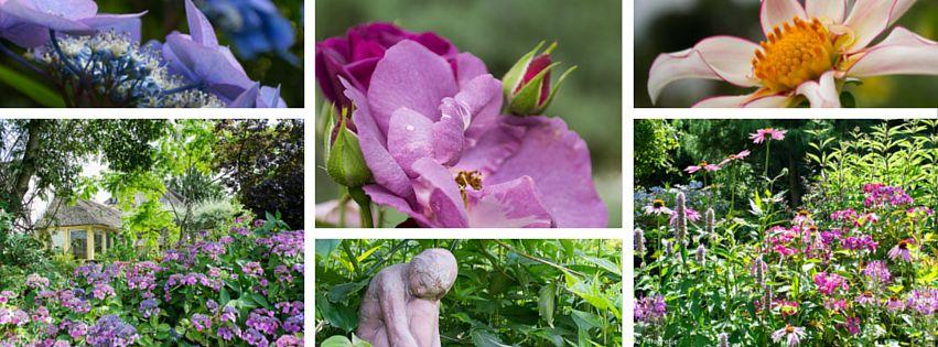 Workshop tuinfotografie Groei & Bloei